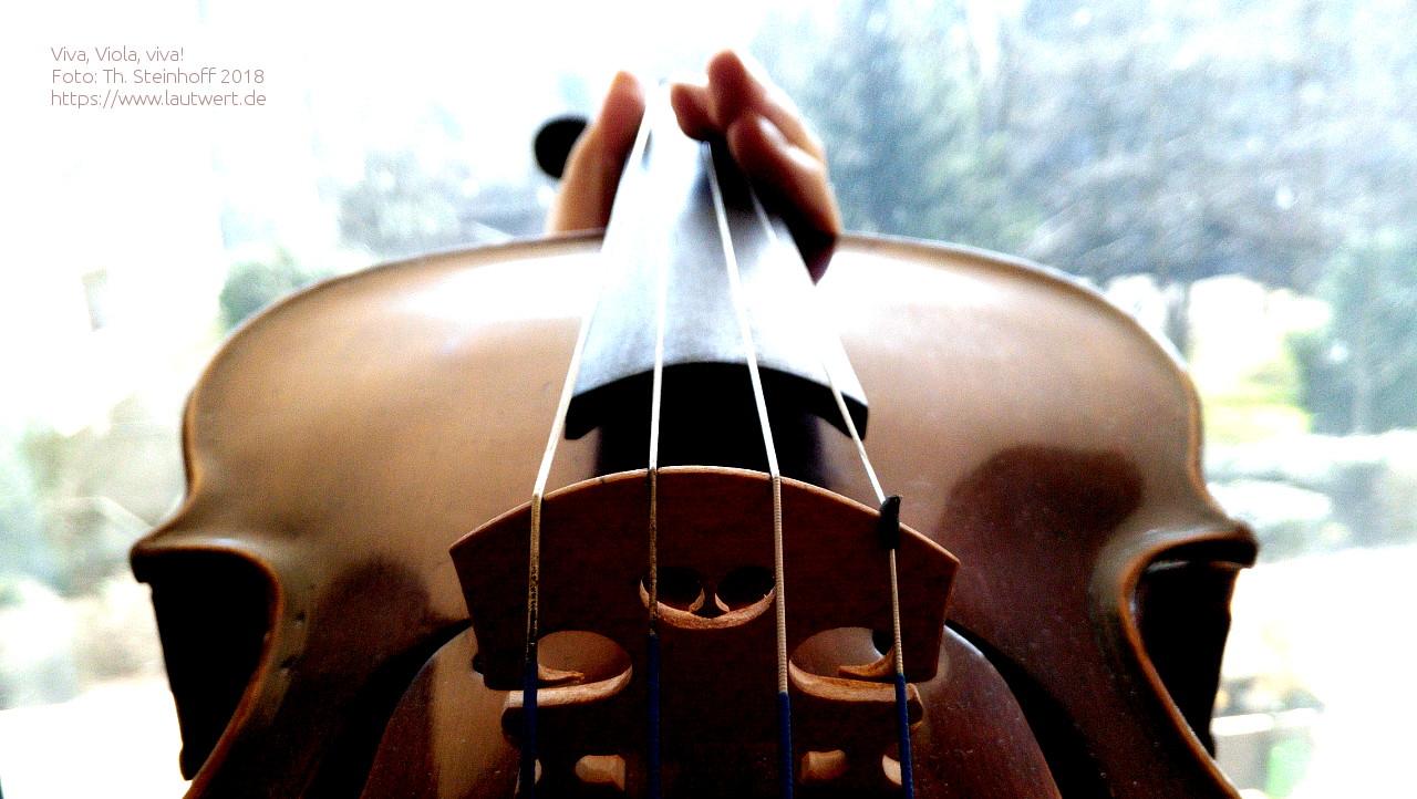 Blick über Steg und Griffbrett einer Viola